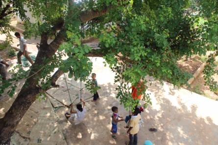 Uncle's farm in Kilifi
